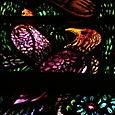 Birds, at the feet of Saint Francis